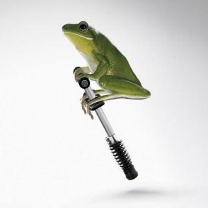 Pogo frog