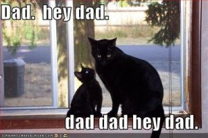 Hey Dad!