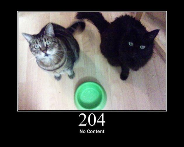 204 No Content