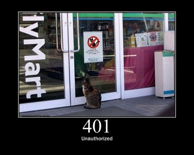 401 Not Authorized